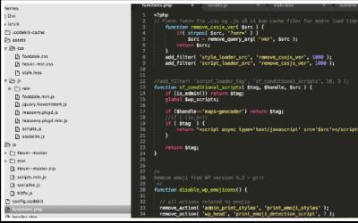 Using debug.log for debugging in WordPress