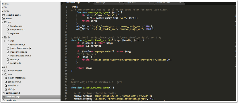 Using debug log for debugging in WordPress - Larsik Corp